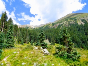 View of Wheeler Peak near the end of Williams Lake Trail in Carson National Forest