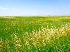 View from Prairie Wind Overlook in Badlands National Park in South Dakota