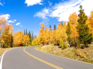 Autumn colors along Sand Lake Road in the Snowy Range in Medicine Bow National Forest in Wyoming