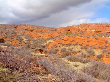 Bent Rock Trail in Red Mountain Open Space in Colorado